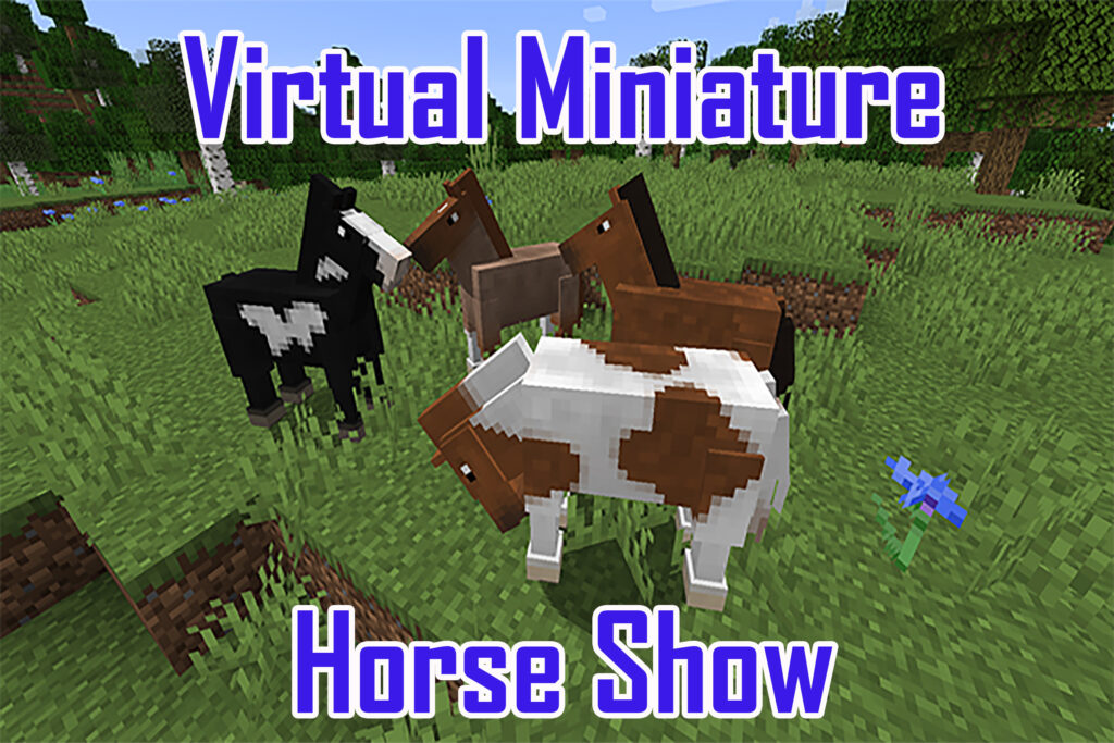 virtualminiaturehorseshow